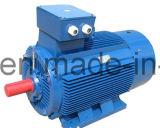 Motore asincrono a tre fasi di alta efficienza di serie Y2/Y3