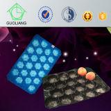 Frucht-Gemüse-Industrie-freies Beispielgebrauch-Wegwerfkunststoffgehäuse-Tellersegment