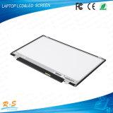 Brandnew 1366*768 N116bge-L41 вверх и вниз компьтер-книжки LCD Screen Panel