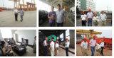 단 하나 광속 산업 전기 철사 밧줄 호이스트 미사일구조물 기중기 중국