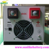 Low Frequency 1000W off-Grid Solar Pura Sine Wave DC Inverter