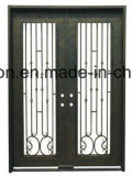 Fancy Straight Custom Special Iron Front Entry Doors