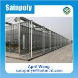 Serra di vetro di prezzi bassi per agricolo