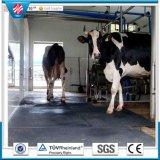 耐久財は圧力ゴム製牛ベッドのマットを減らし、