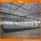 Túnel Plastic Film Greenhouse para Seeding