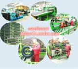 Radialpersonenkraftwagen-Gummireifen mit Comforser HP 195/70r14 215/70r15 175/65r14