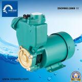 Bomba de água Gp125/PS130 de escorvamento automático de superfície elétrica automática (0.5HP)