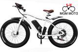 Vélo de neige avec le moteur et la batterie au lithium