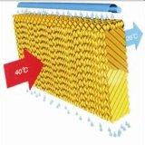 Garniture de refroidissement par évaporation pour la serre chaude de Jindun