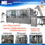 500ml Bottle Juice Filling/Packing/Making Plant