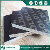 materiale da costruzione della costruzione impermeabile di 18mm
