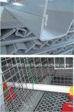 Het goedkope Automatische Frame van de Apparatuur van de Kip voor de Kip van de Jonge kip van de Grill van de Laag