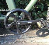 後部ラック電池浜の巡洋艦の電気自転車(OKM-704)