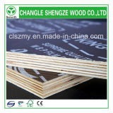 Sale chaud 18mm avec Logo Film Faced Plywood