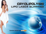 Machine portative de cryothérapie de cavitation de laser de Cryolipolysis Lipo
