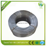 Bille propre galvanisée de bac de fil d'acier inoxydable de récureur