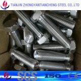 ASTM Hastelloy Befestigungsteil/Hastelloy Schraube von China