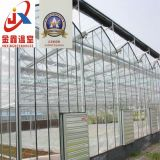 Стеклянный парник используемый для растущий цветка с стальной структурой