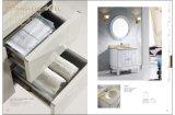Module de salle de bains de luxe (DSS2016)