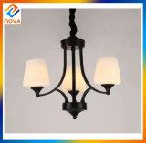 Decorazione moderna di Stype della lampada della stanza di lampada dei lampadari a bracci