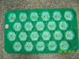 Bandejas jerarquizadas del empaquetado plástico para el melocotón, Apple, pera
