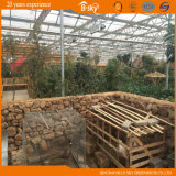 Multi-Span Glass Greenhouse para o jardim de Picking