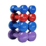 GroßhandelsClourful Dumbbell Weight Set mit Factory Price