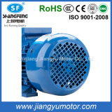 Ye2 Three-Phase AC Electrical Asynchronous Motor with CE and RoHS