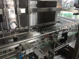 Завод машины автоматического пальмового масла стеклянной бутылки заполняя покрывая