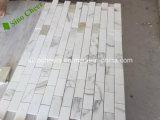 La stanza da bagno italiana del rivestimento della parete del marmo dell'oro di Calacatta del grado Premium copre di tegoli il mosaico a buon mercato