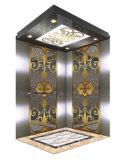 630kg, 800kg, 1000kg, Machine 룸을%s 가진 1m/S Elevator Elevator