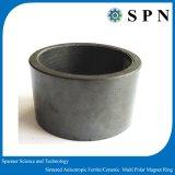 亜鉄酸塩の常置カスタマイズされたMultipole磁石のリングはカスタマイズした