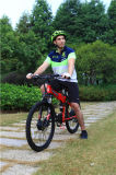 China barata que dobra a bicicleta Foldable da bicicleta 48V de E elétrica