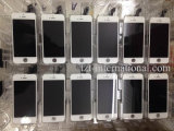 LCD para telemóvel mais vendido para iPhone 6 6s Plus 5s Display