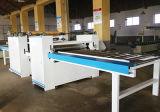 Máquina da laminação do PVC do lado do dobro do painel da madeira compensada do Woodworking