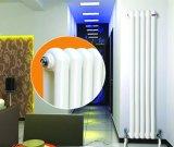 Heiße Verkaufs-doppelter Spalten Rund-Wärme Typ Stahl-Heizkörper