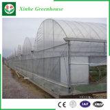Serra di plastica di doppio strato per le verdure
