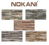 De verglaasde Ceramische Tegel van de Muur, de Tegels Muur van de Achtergrond van het Porselein