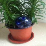 小型水地球(3)の花のためのOfiiceの水まきのツールのセットしなさい