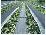 編まれる高品質黒い農業PP