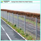 PVC/Powderによって塗られた溶接された金網の塀はまたは鉄条網の工場価格を溶接した