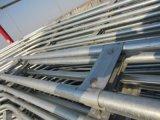 Горячим скелет сбывания гальванизированный качеством стальной для парников