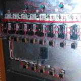 PE 층/겹켜 Co-Extrusion 뻗기 필름 기계 (SF-500)