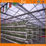 Type à haute production Chambre verte de Venlo de feuille de polycarbonate