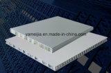 경량 Ral9016 백색 색깔 알루미늄 벌집 위원회