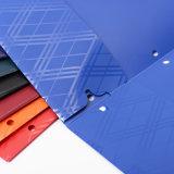 Preiswertes Plastikfaltblatt mit zwei Taschen für Prmotional