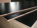Le contre-plaqué marin de faisceau de bois dur/le contre-plaqué/film Shuttering ont fait face au contre-plaqué pour la construction