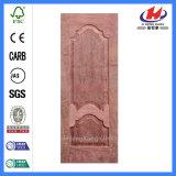 EV lamellenförmig angeordnetes Furnier-Blatt geformte Tür-Haut (JHK-008-1)
