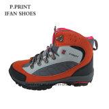 Form-neuer wandernder Schuh-preiswerter Preis auf Verkauf