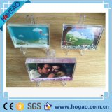 Photo Frame Show Multi-Shaped Plastic Water Snow Globe for Wholesale